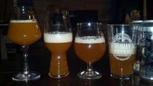 From L to R: Teku, IPA, Tulip, Shaker